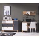 Kolekcja Focca XV - komplet mebli młodzieżowych, biurko, komoda, półka