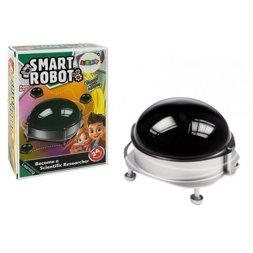 Edukacyjny Inteligentny Robot Detektyw